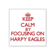 Keep calm by focusing on Harpy Eagles Sticker
