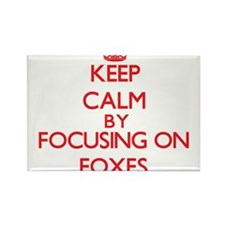 Keep calm by focusing on Foxes Magnets