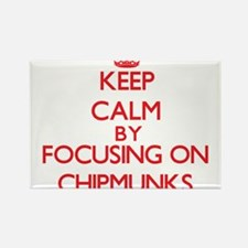 Keep calm by focusing on Chipmunks Magnets