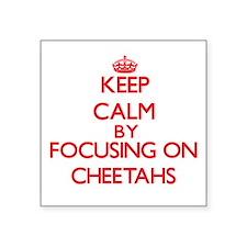Keep calm by focusing on Cheetahs Sticker