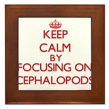 Keep calm by focusing on Cephalopods Framed Tile