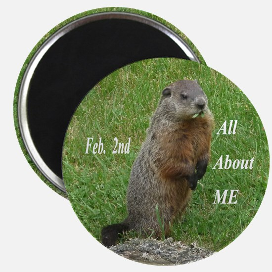 Groundhog Day Magnets