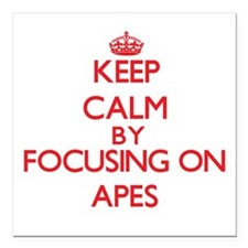 Keep calm by focusing on Apes Square Car Magnet 3""