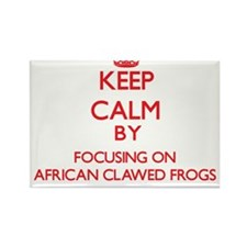 Keep calm by focusing on African Clawed Frogs Magn