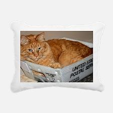 Mail Cat Rectangular Canvas Pillow