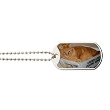 Mail Cat Dog Tags