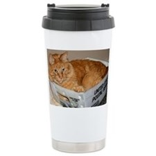 Mail Cat Travel Coffee Mug