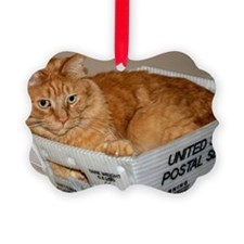 Mail Cat Ornament