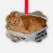Mail Cat Ornament