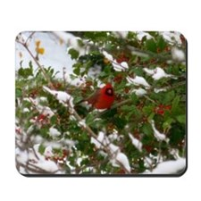 Red Robin  Mousepad