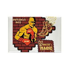 BLO Pro Boxing design Magnets