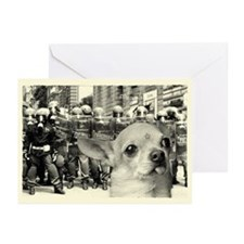 Militant Chihuahua! Greeting Cards (Pack of 6)