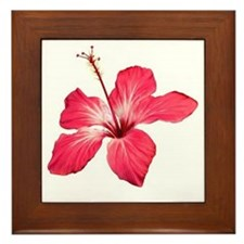 Flower Framed Tile