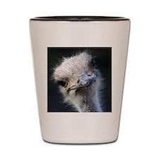 Ostrich Shot Glass