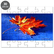 Autumn Fire Puzzle