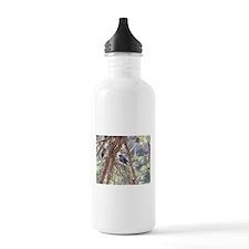 Bird in a Pine Water Bottle