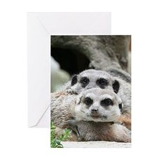 Meerkat042 Greeting Card
