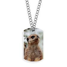 Meerkat062 Dog Tags