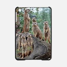 Meerkat063 iPad Mini Case