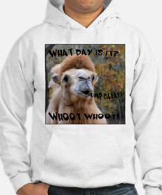What Day is it? Camel Hoodie