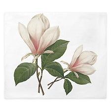 Vintage botanical art, elegant magnolia flower. Ki