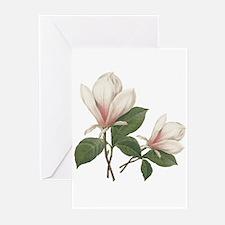 Vintage botanical art, elegant magnolia flower. Gr