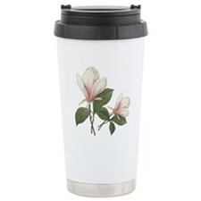 Vintage botanical art, elegant magnolia flower. Tr