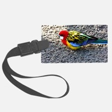 Exotic Bird Luggage Tag