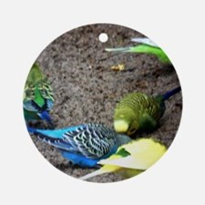Budgies  Round Ornament