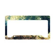 Calm License Plate Holder