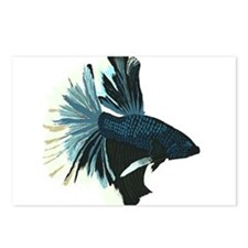 Blue Betta Male Postcards (Package of 8)