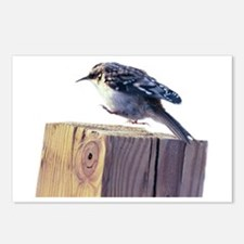 Hopping Bird Postcards (Package of 8)