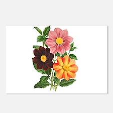 Dahlias Postcards (Package of 8)
