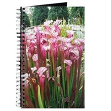 Pitcher plant floral Pink Journal