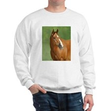 Bay Horse Jumper