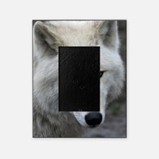 Wolf026 Picture Frame