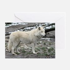 Wolf029 Greeting Card