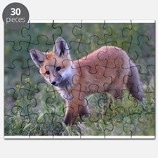 F5 x14.png Puzzle