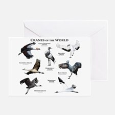 Cranes of the World Greeting Card