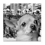 Militant Chihuahua Tile Coaster
