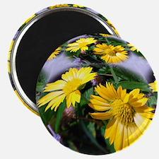 Stunning Petals Magnet