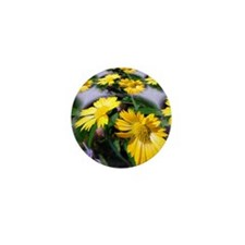 Stunning Petals Mini Button