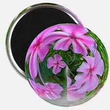 Petals in a Bubble Magnet