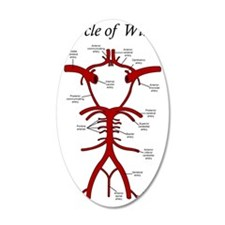Circle of Willis Wall Decal