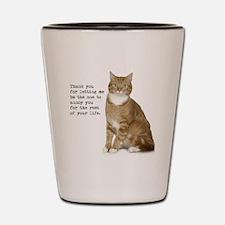 Annoying Cat Shot Glass