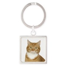 Ginger Cat Keychains