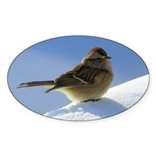 Snow Sparrow Decal