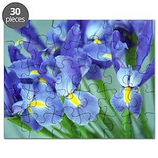 Spring Purple Irises Photo Puzzle