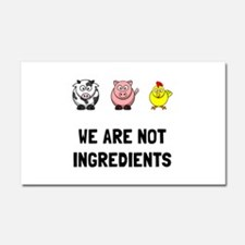 Not Ingredients Car Magnet 20 x 12