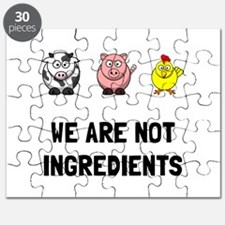 Not Ingredients Puzzle